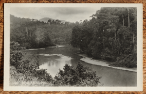 Malaya_Pahang_River_postcard_British_Empire_Exhibition_1924-L